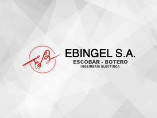 EBINGEL S.A